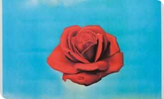 №39. Salvador Dali – Meditative Rose